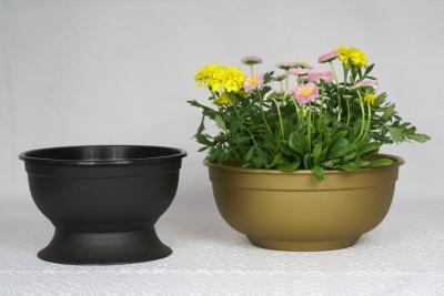 Flora / Gazon Flora