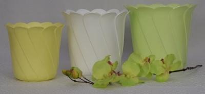 Donice Tulipan Palma