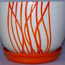 Wstążka Pomarańcz